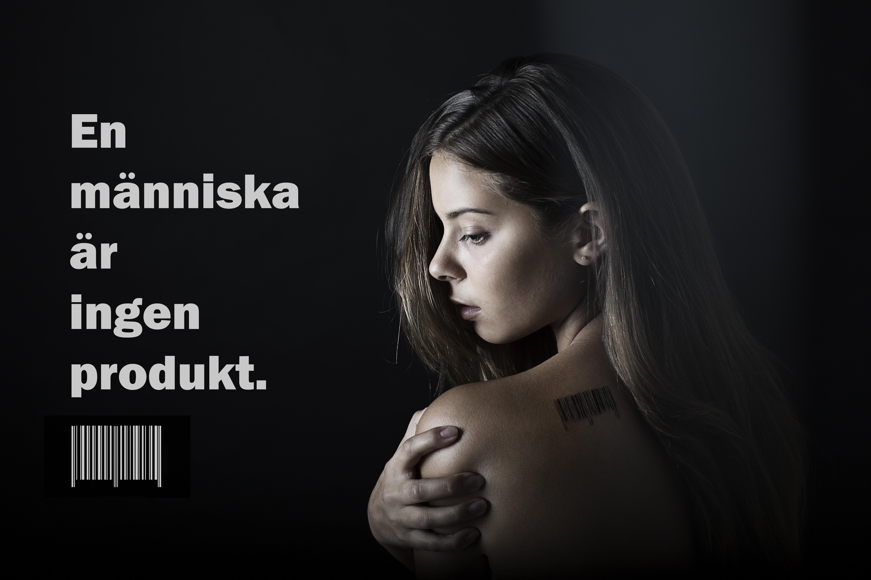 Lisa Höök