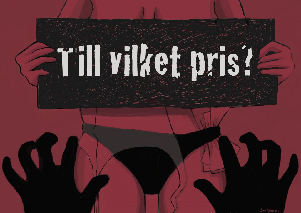 Sara Andersson_Tillvilketpris
